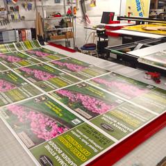 SK specialty printing_PA181436_med.jpg