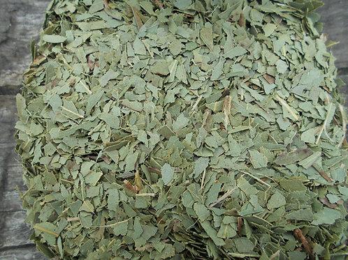 2643-Bulk Eucalyptus Leaf, Organic, 1 lb.