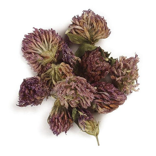Bulk Red Clover Blossoms, Whole