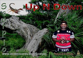UP n DOWN COVER.jpg
