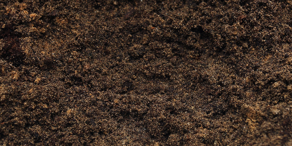 Soil Health, Cover Crops, and Composting