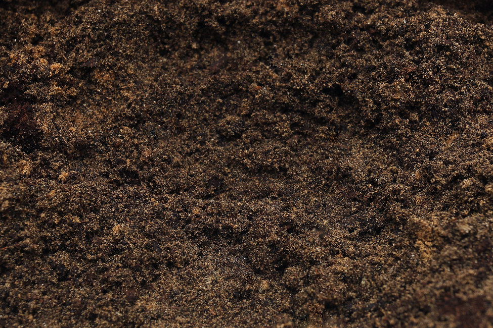 Backyard dirt from excavation of french drain.