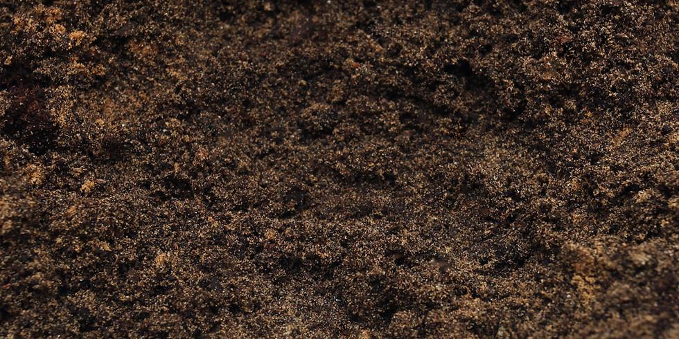 SOIL and BioField Enhancement