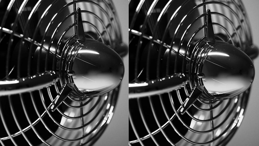 Fan or Fans