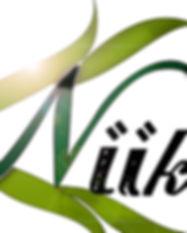 niik logo_edited.jpg