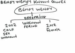 Bendy Wendy