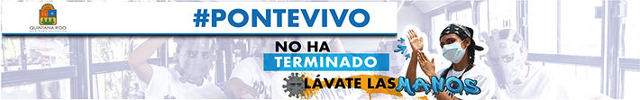 1024X160PONTE-VIVO_LAVADO.jpg