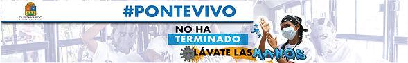 1024X160_PONTE-VIVO_LAVADO.jpg