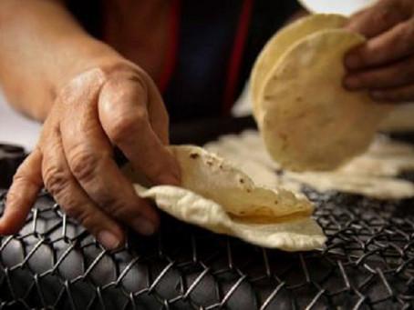 Se ordena al PAN suspender la entrega de papel para envolver tortillas