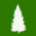 Forest Maps Icon