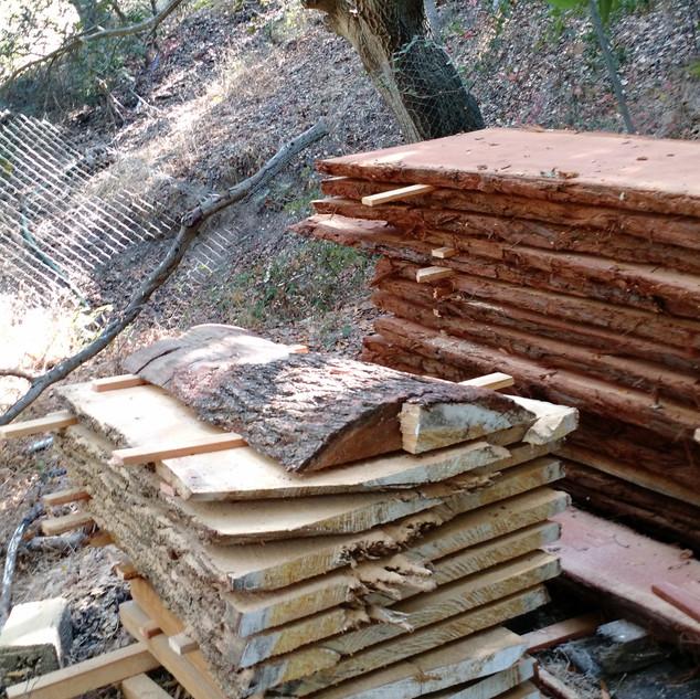white cedar 2016-08-16 15.53.22-1.jpg