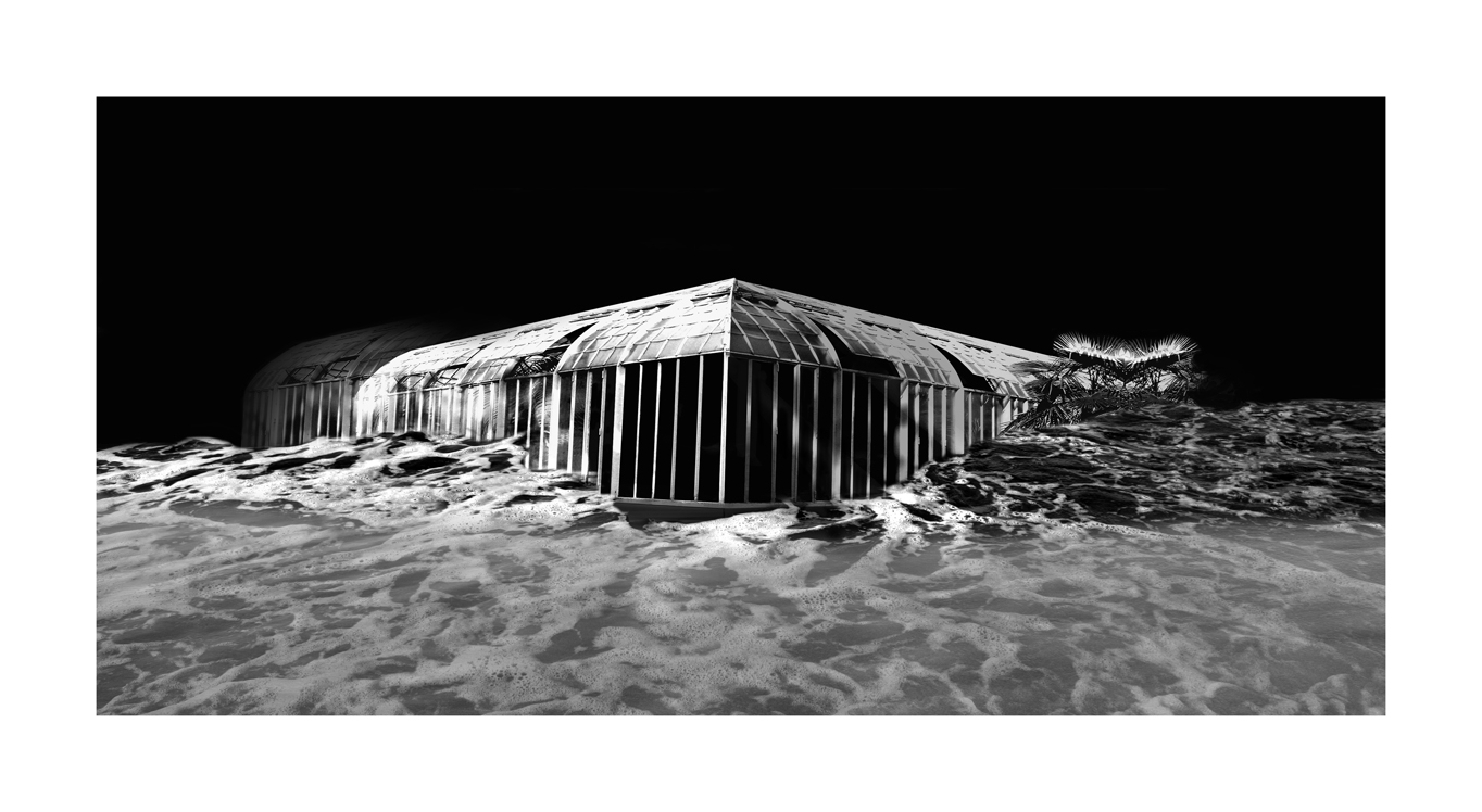Invernadero IV Foto digitalizada Zulema Maza76cm por 138cm 2008.jpg