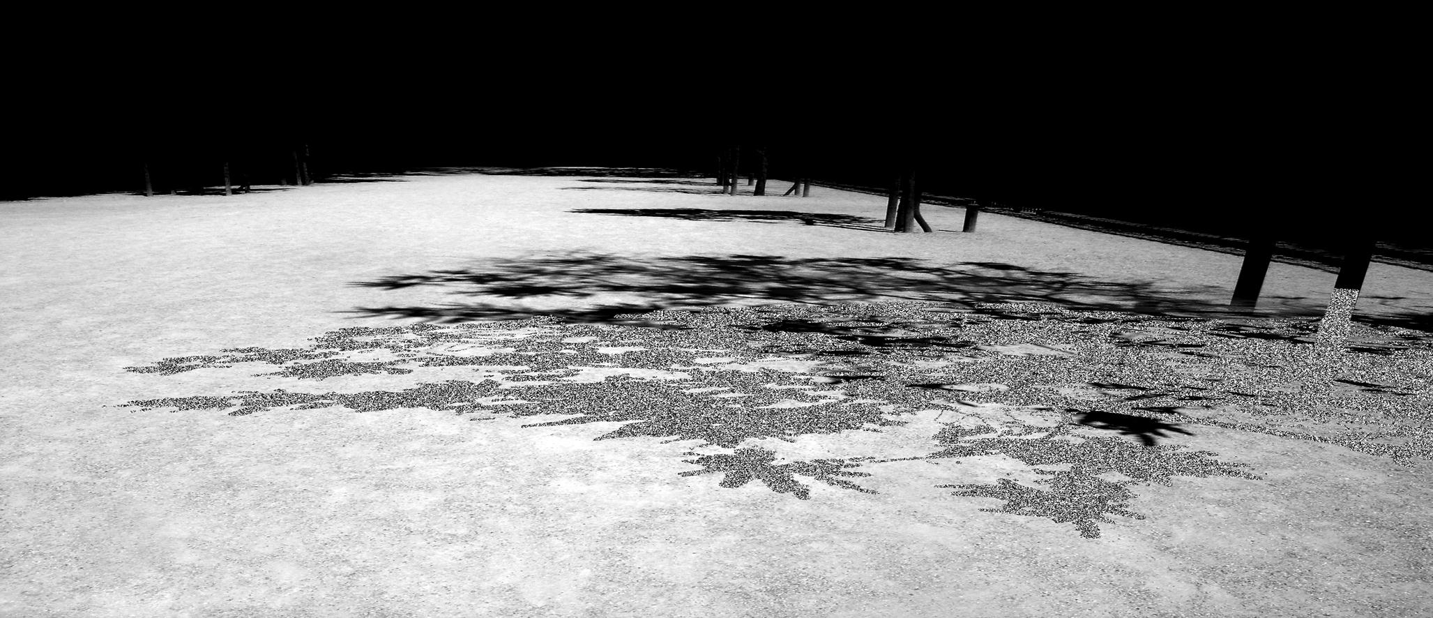 M Arbol I Fotografia digitalizada 70cm por 162cm 2008 Zulema Maza.jpg