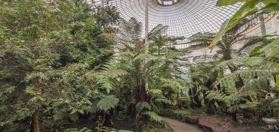 Ecosse_Jardin botanique