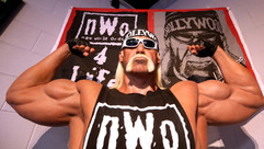 os-pictures-hulk-hogan-has-landed-on-int