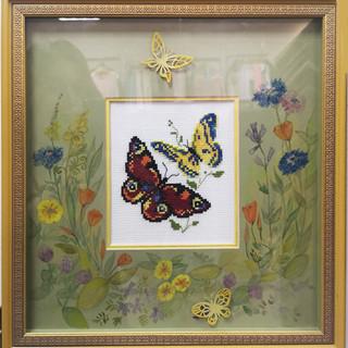 бабочки-2.jpg