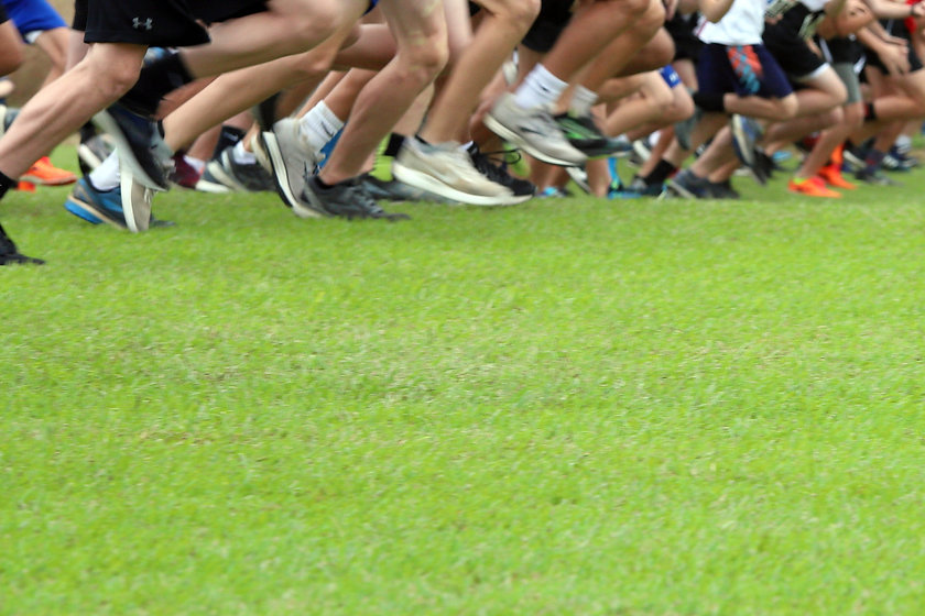 Cross Country runners running on green grass, with copy space for text._edited.jpg