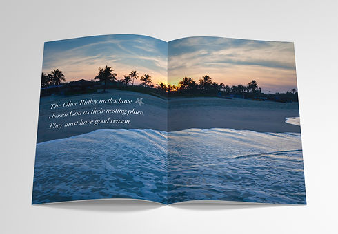 Mockup_A4_Brochure_6.jpg