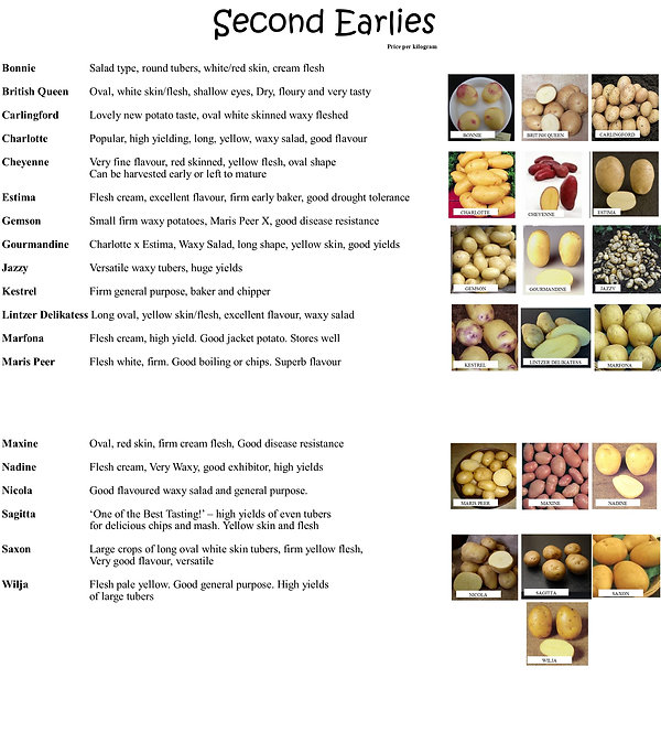 Seed Potatoes 2021 2.jpg