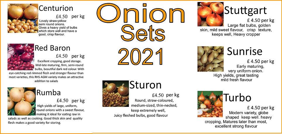 Onion Sets 2021.jpg