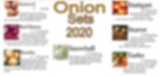 onion sets 2020.jpg