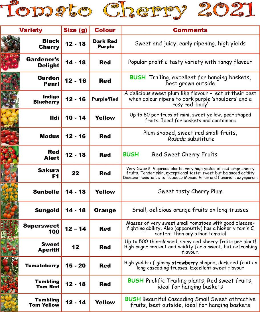 Tomatoes 2021 Cherry.jpg