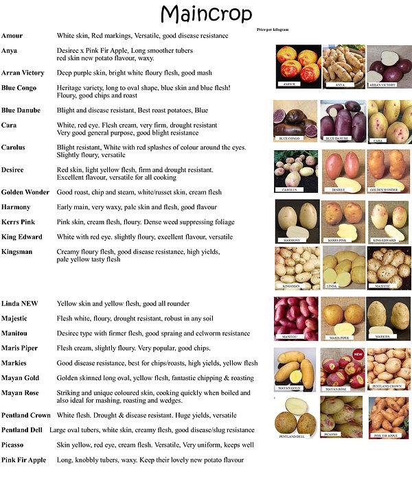 Seed Potatoes 2021 3.jpg