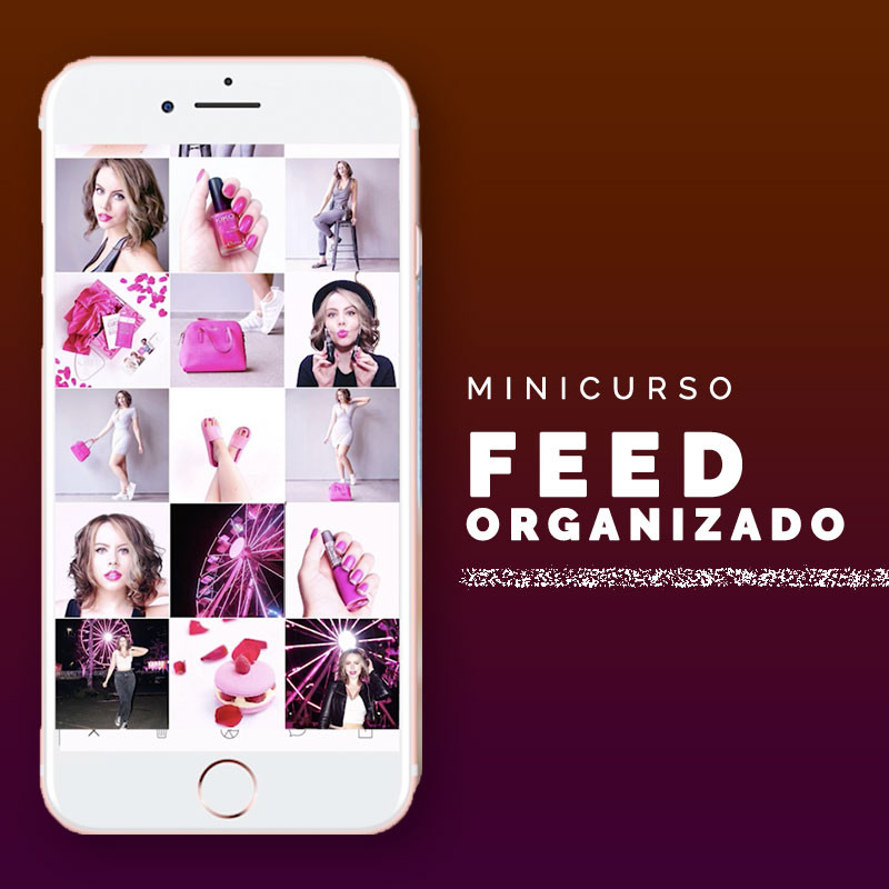 Feed Organizado, curso de feed organizado.