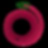 CPA logo v1.png