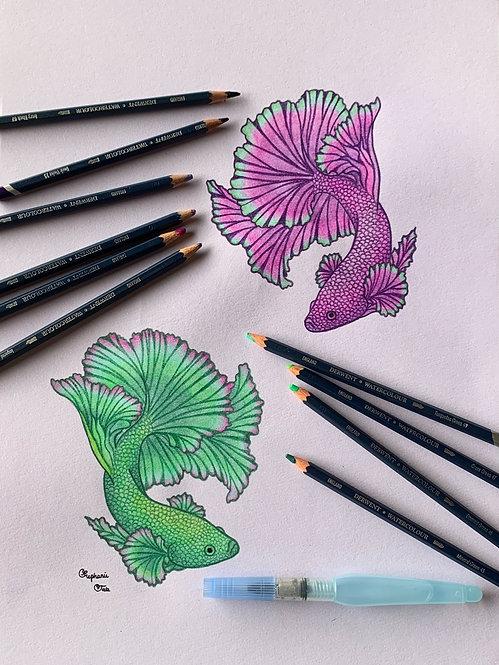 Green and Purple Yin Yang Betta Half Moons