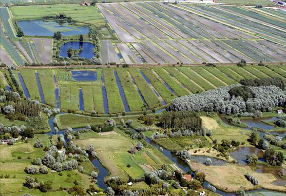 Vue aérienne des marais