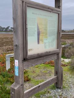 Monterey Bay, CA USA