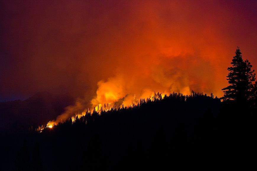 wildfire-silhouette-55989802 (1).jpg