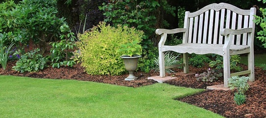 Bolton Lawn Care, Caledon Lawn Care, Weed Killer Caledon, Weed Control Bolton,