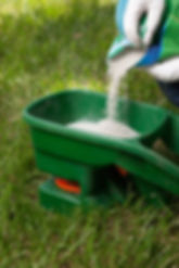 Weed Management Caledon, Weed Control Bolton, Caledon Lawn Care Services,