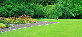 Caledon Lawn Care, Bolton Lawn Care, Weed Control Caledon,