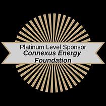 Platinum Connexus (1).png