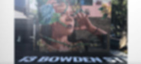 SIGNAGE_BOWDEN_ST_01.jpg