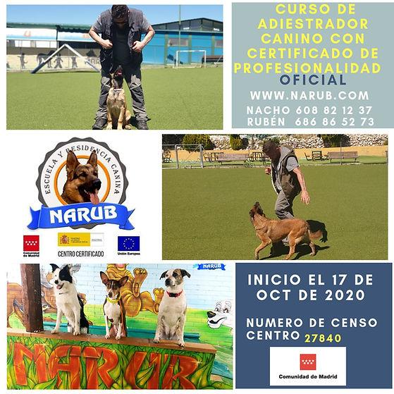 carter-curso-adiestrador-canino-madrid-2