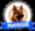 logo-narub-escuela-residencia-canina-mad