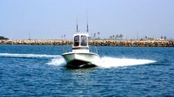 Californian Whaler