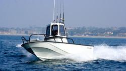 Albacore Boston Whaler