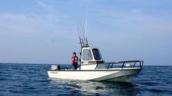 Albacore Whaler