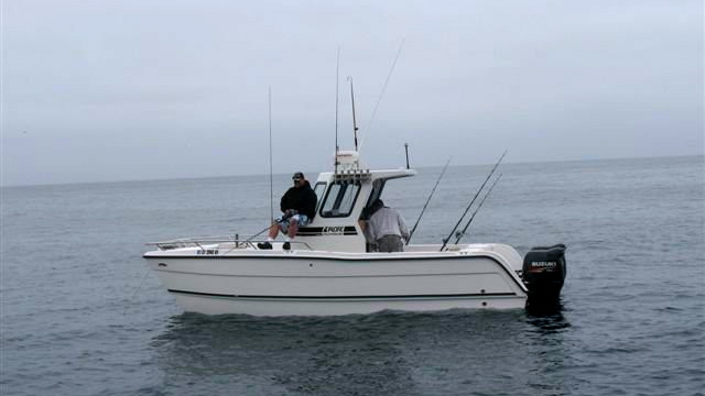 Sport Fishing Cat