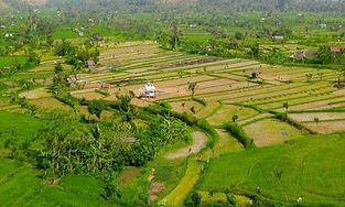 Tanzania Landscape.jpg