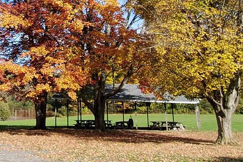 Pavilion Rental - fewer than 20 people
