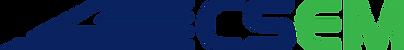 Civil Solutions Logo Letters.png