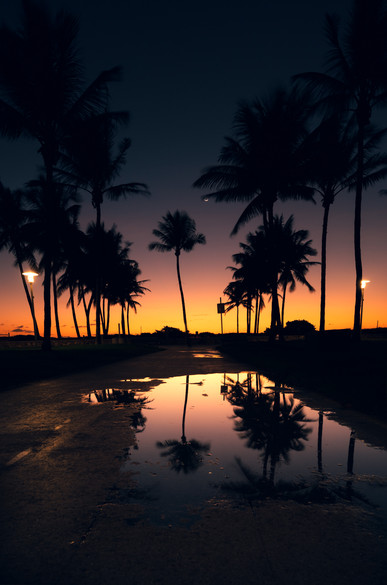 Puddle in Paradise.