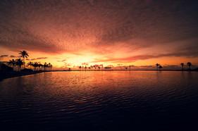 Paradise vision.
