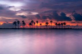 Sunset vision.